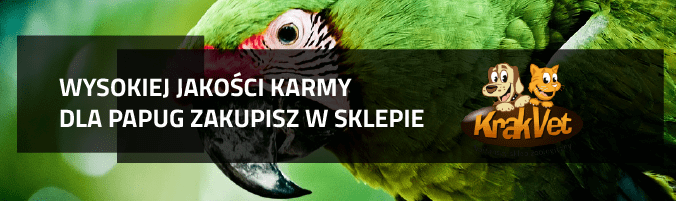 karmy-dla-papug-krakvet-16