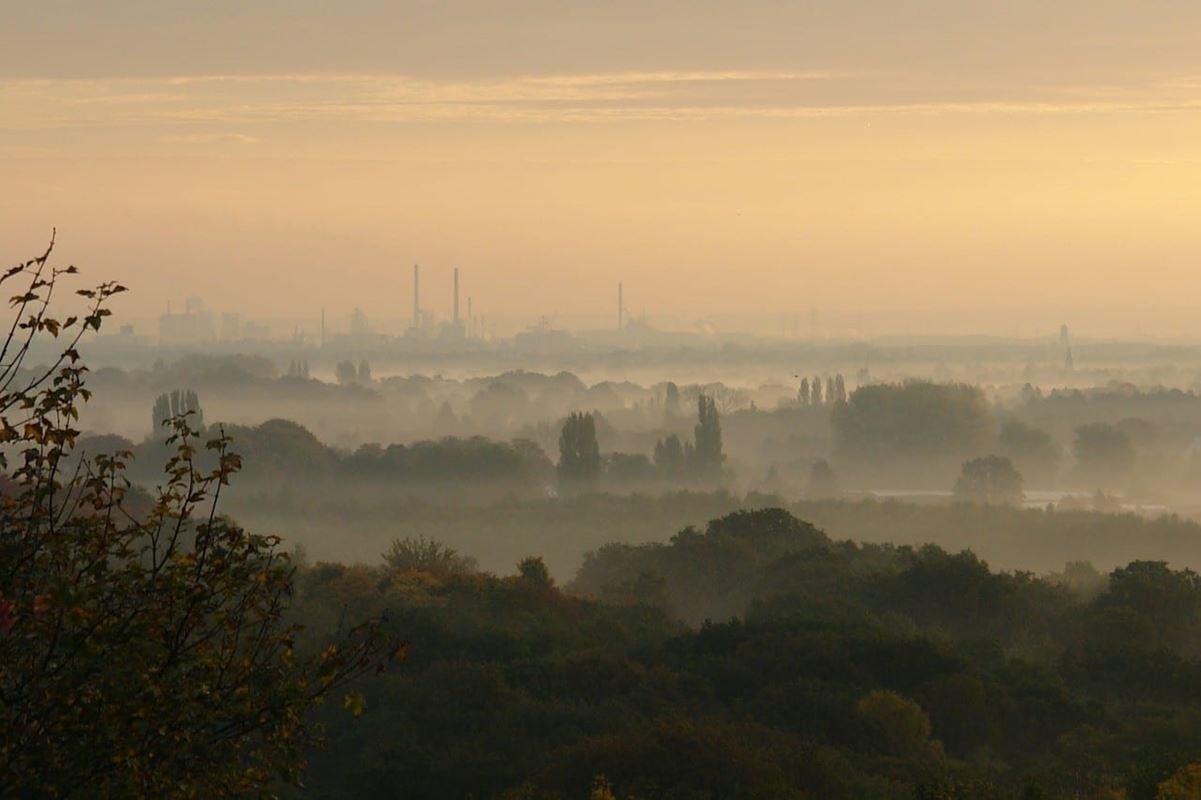 morning-mist-427796_1280