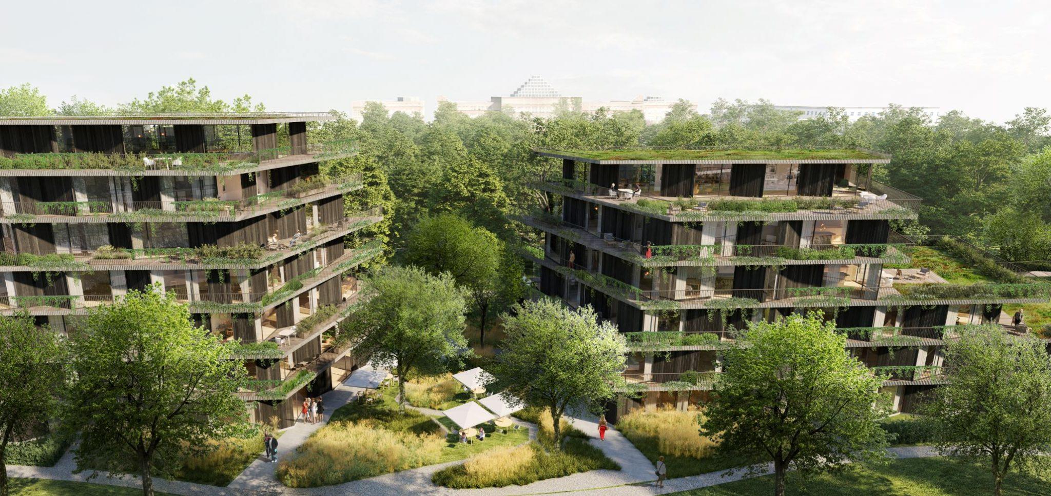 Budynki mają mieć kaskadową elewację i duże tarasy.