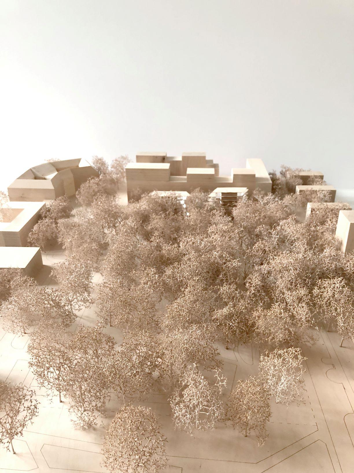Projektanci analizują otoczenie przyszłej zabudowy.